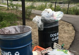 Garbage bin with litter