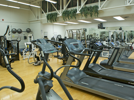 Interior of fitness centre showing rows of treadmills and exercise equipment