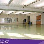 Huron Park Ojibway Room B
